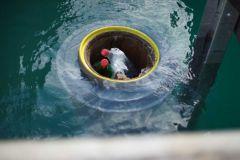 Collecteur de déchets Seabin en opération dans un port de plaisance